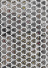 hexagons grey and golds